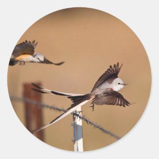 Scissor-Tailed Flycatchers (Tyrannus Forficatus) Classic Round Sticker