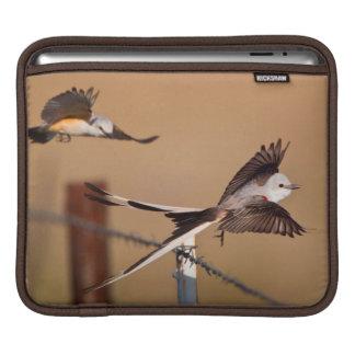 Scissor-Tailed Flycatchers (Tyrannus Forficatus) Sleeve For iPads