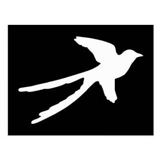 Scissortail Flycatcher Postcard