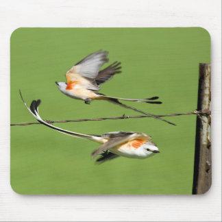 Scissortails in Flight Mouse Pad