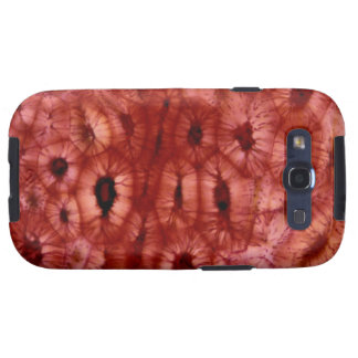 Sclerenchyma Cells from a Cherry Pit Samsung Galaxy SIII Case