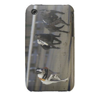 Scobys Cookie 2 Case-Mate iPhone 3 Case