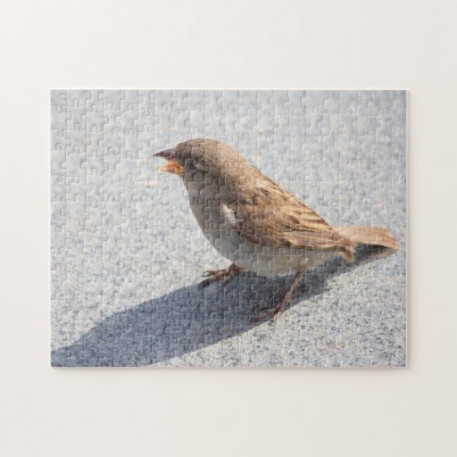scolding sparrow jigsaw puzzles