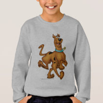 Scooby Doo Airbrush Pose 3 Sweatshirt