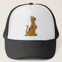 Scooby Doo | Classic Pose Trucker Hat