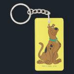 "Scooby-Doo Cuter Than Cute Keychain<br><div class=""desc"">Scooby Doo Character Art</div>"