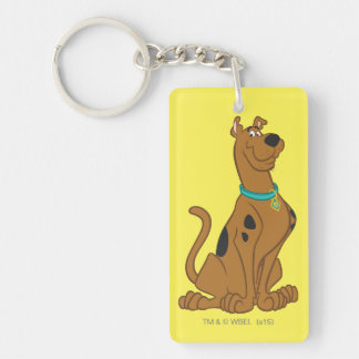 Scooby Doo Cuter Than Cute Pose 15 Double-Sided Rectangular Acrylic Keychain
