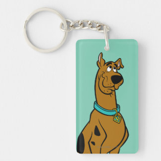 Scooby Doo Pose 27 Double-Sided Rectangular Acrylic Keychain