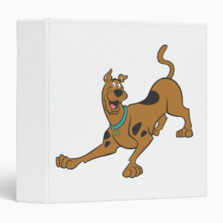 Scooby Doo Pose 39 3 Ring Binder