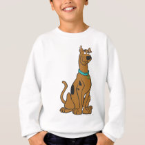 Scooby-Doo Puppy Eyes Sweatshirt
