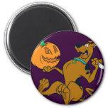 Scooby Halloween 07 Imán Redondo 5 Cm