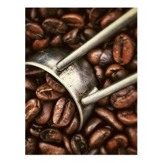 Scoop of Coffee Beans Post Card