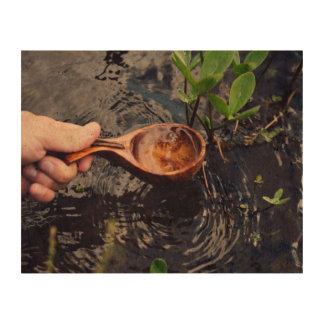 scooping clear pond water queork photo prints