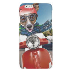 Case Savvy iPhone 6 Glossy Finish Case with Jack Russell Terrier Phone Cases design