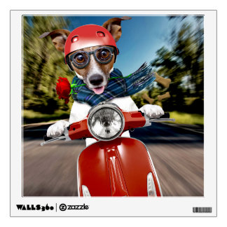 Scooter dog ,jack russell wall sticker