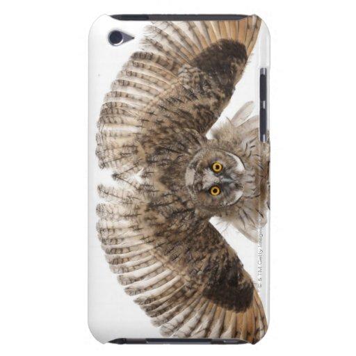 Scops-búho eurasiático - scops del Otus (2 meses) Barely There iPod Coberturas