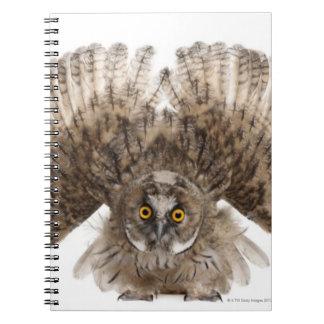 Scops-búho eurasiático - scops del Otus (2 meses) Libros De Apuntes Con Espiral