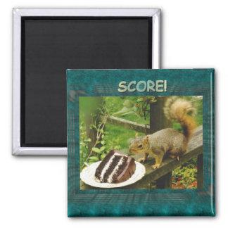 score squirrel square magnet