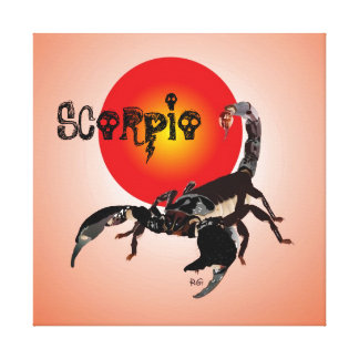 Scorpio canvas canvas prints