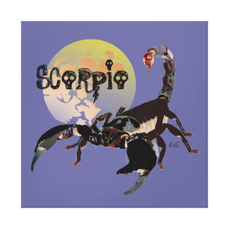 Scorpio canvas stretched canvas prints