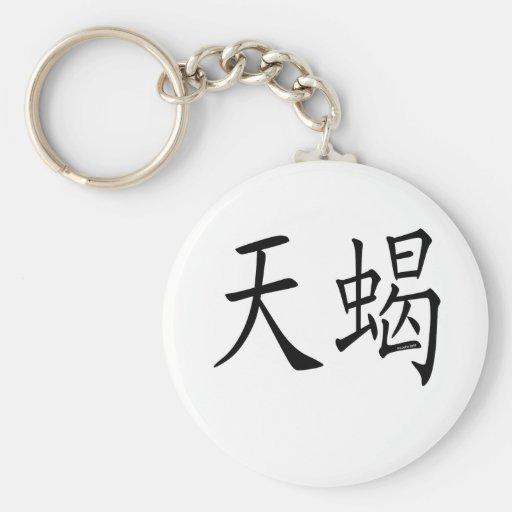 Scorpio Chinese Symbol Keychain