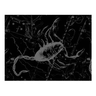 Scorpio Constellation Hevelius circa 1690 on Black Postcard
