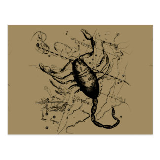 Scorpio Constellation Hevelius circa 1690 Vintage Postcard