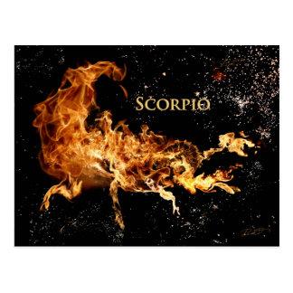 Scorpio Post Card - Zodiac Symbols