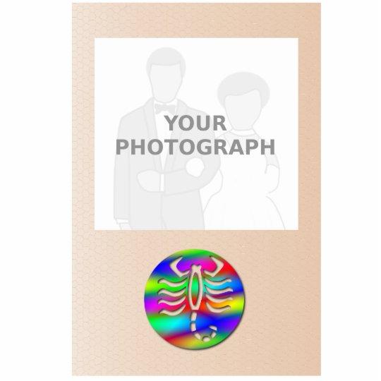 Scorpio Rainbow Color Zodiac Scorpion Photo Frame Statuette