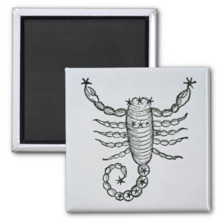 Scorpio (the Scorpion) an illustration from the 'P Magnet