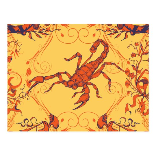 Scorpion 2 ~ Scorpions Scorpio Insect Insects Postcard