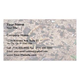 Scorpion, Arizona Business Card