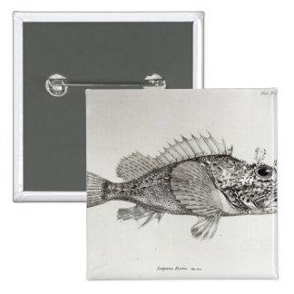 Scorpion Fish Button