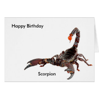 Scorpion image for Birthday-greeting-card Greeting Card