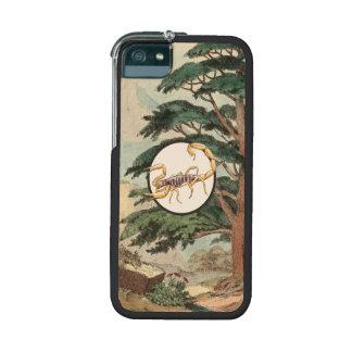 Scorpion In Natural Habitat Illustration Case For iPhone 5