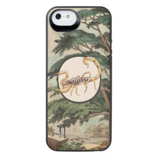 Scorpion In Natural Habitat Illustration Uncommon Power Gallery™ iPhone 5 Battery Case