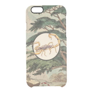 Scorpion In Natural Habitat Illustration Uncommon Clearly™ Deflector iPhone 6 Case