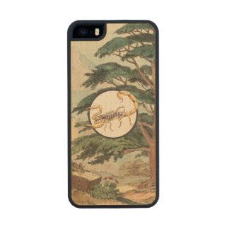 Scorpion In Natural Habitat Illustration Carved® Maple iPhone 5 Slim Case