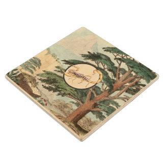 Scorpion In Natural Habitat Illustration Wooden Coaster
