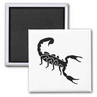 Scorpion Magnet