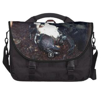 Scorpion Mother and Children Laptop Messenger Bag