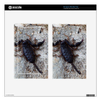 Scorpion of the species Euscorpius italicus Skin For Kindle Fire