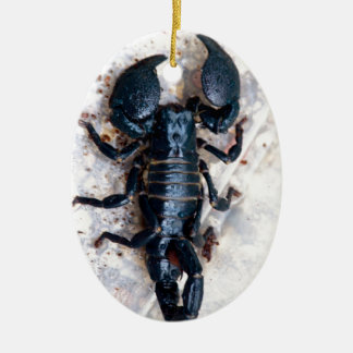Scorpion Double-Sided Oval Ceramic Christmas Ornament