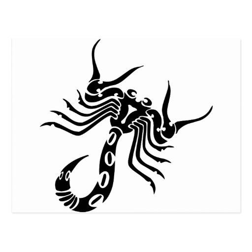 Scorpion Scorpio Postcard