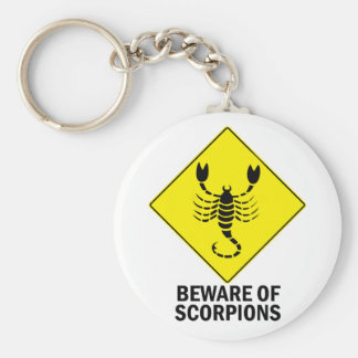 Scorpions Keychains