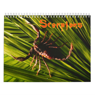 Scorpions Wall Calendar