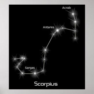 Scorpius Constellation Scorpio Zodiac Business Posters