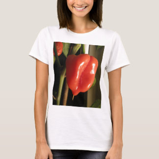 Scotch Bonnet Chilli HOT STUFF T-Shirt