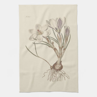 Scotch Crocus Botanical Illustration Kitchen Towel