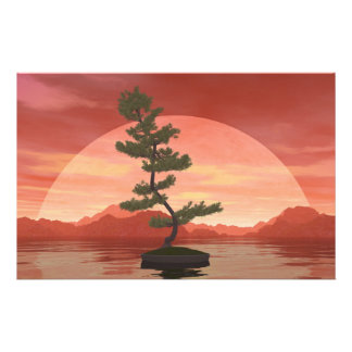 Scotch pine bonsai tree - 3D render Stationery